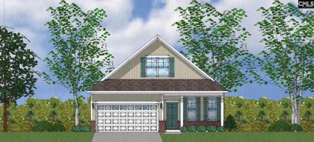 5 Attucks Court Lot 3, Elgin, SC 29045 (MLS #454239) :: EXIT Real Estate Consultants