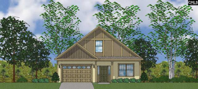 37 Attucks Court Lot 12, Elgin, SC 29045 (MLS #454240) :: EXIT Real Estate Consultants