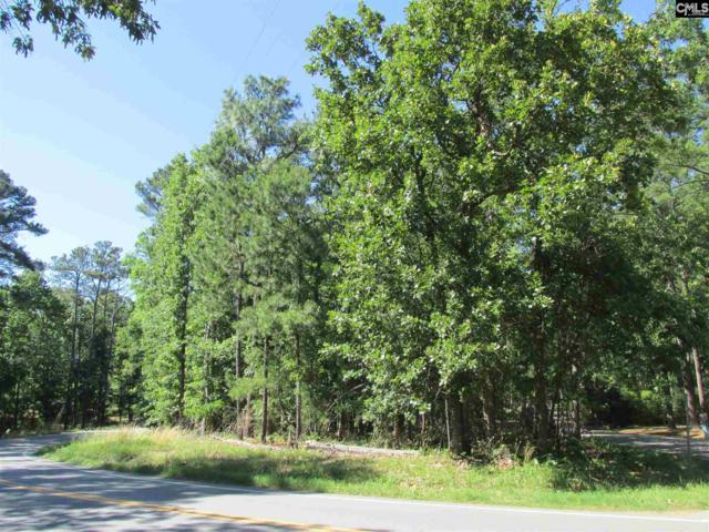 Richard Franklin Road, Chapin, SC 29036 (MLS #454277) :: Home Advantage Realty, LLC