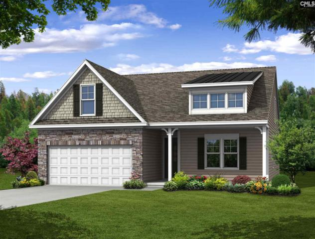 216 Laurelbrook Drive, Chapin, SC 29036 (MLS #454393) :: Home Advantage Realty, LLC