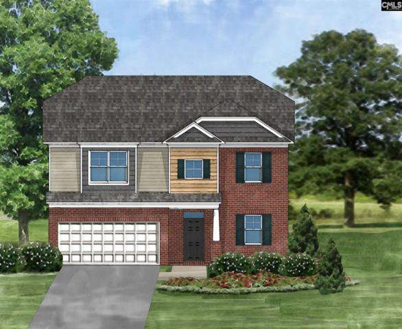 328 Berlandier Lane, Columbia, SC 29212 (MLS #454448) :: The Olivia Cooley Group at Keller Williams Realty