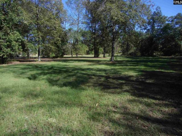 277 Charter Oak Road, Lexington, SC 29072 (MLS #454536) :: Home Advantage Realty, LLC