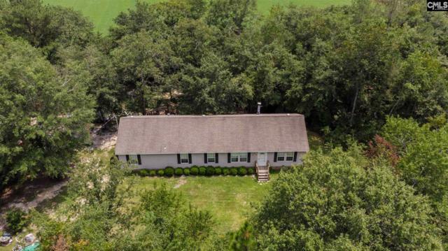 1125 Ben Franklin Road, Gilbert, SC 29054 (MLS #454541) :: EXIT Real Estate Consultants