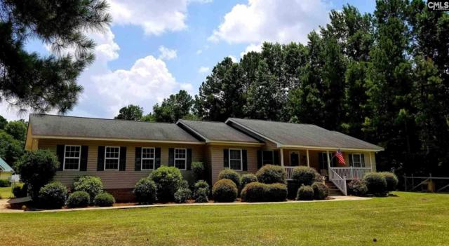 108 New Village Road, Gilbert, SC 29054 (MLS #454545) :: EXIT Real Estate Consultants