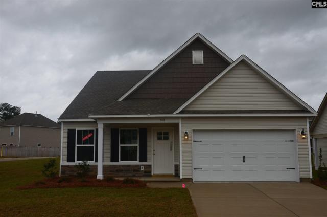 221 St. Charles Place, Chapin, SC 29036 (MLS #454546) :: Home Advantage Realty, LLC