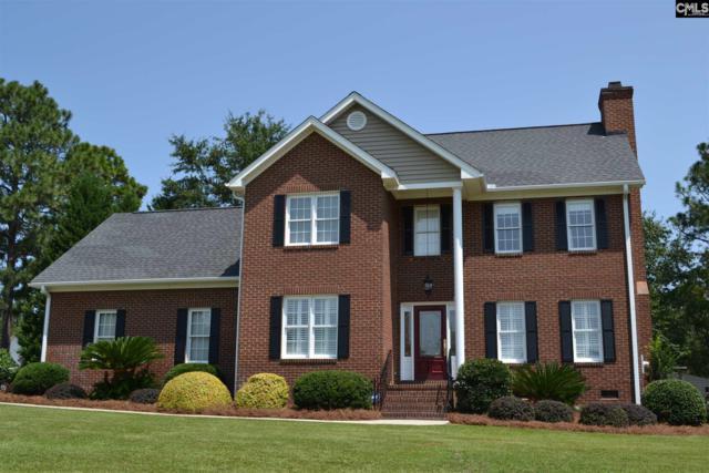 120 Hounds Run Drive, Lexington, SC 29072 (MLS #454551) :: Home Advantage Realty, LLC