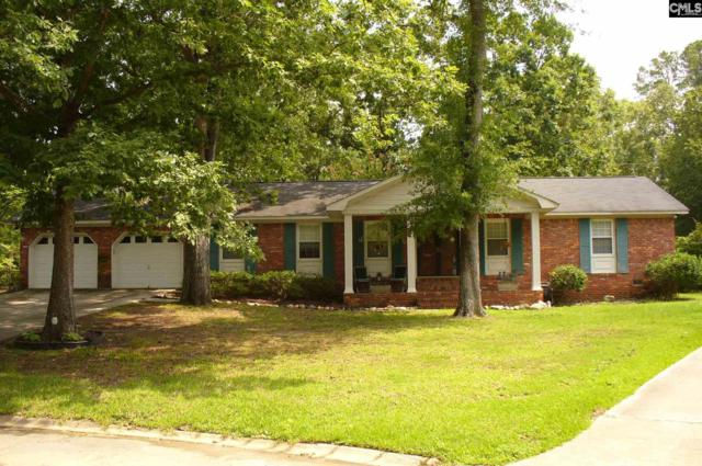 300 Stepney Court, Columbia, SC 29210 (MLS #454561) :: RE/MAX AT THE LAKE
