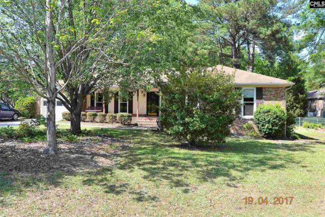 119 Hayburg Drive, Irmo, SC 29063 (MLS #454569) :: Home Advantage Realty, LLC