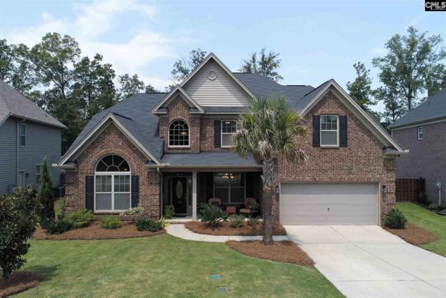 713 Dutchmans Branch Court, Irmo, SC 29063 (MLS #454638) :: EXIT Real Estate Consultants