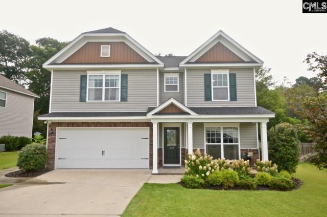 239 Peach Hill Dr, Lexington, SC 29072 (MLS #454659) :: EXIT Real Estate Consultants