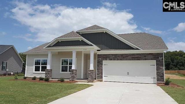 178 Sunsation Drive, Chapin, SC 29036 (MLS #454663) :: Home Advantage Realty, LLC