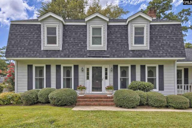 136 N Beaver Dam Road, Columbia, SC 29212 (MLS #454672) :: Home Advantage Realty, LLC