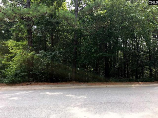 509 Mallard Lakes Drive, Lexington, SC 29072 (MLS #454689) :: Home Advantage Realty, LLC