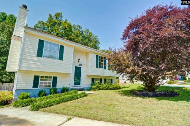 13 Red Thorn Court, Columbia, SC 29229 (MLS #454697) :: Home Advantage Realty, LLC
