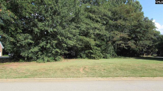 112 Morning Shore Ct. Lot # 25, Lexington, SC 29072 (MLS #454705) :: Home Advantage Realty, LLC