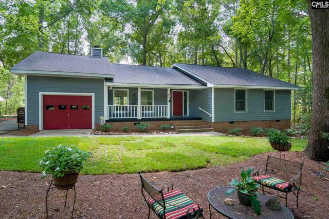 179 Pineview Church Road, Blythewood, SC 29016 (MLS #454722) :: EXIT Real Estate Consultants