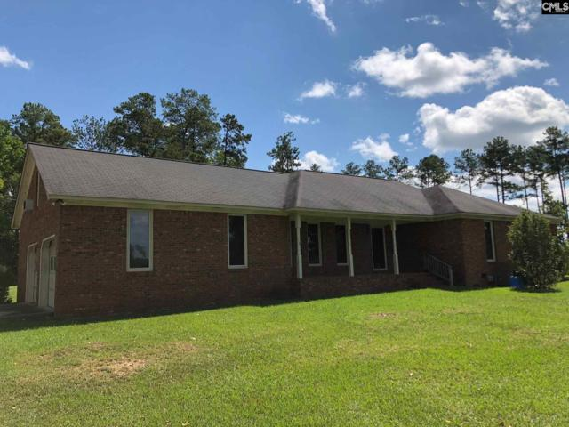 133 Tom Drafts Cr, Gilbert, SC 29054 (MLS #454766) :: EXIT Real Estate Consultants