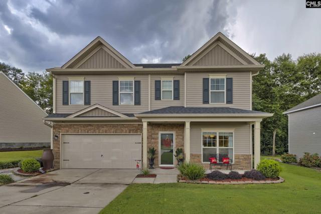 231 Peach Hill Drive, Lexington, SC 29072 (MLS #454769) :: EXIT Real Estate Consultants
