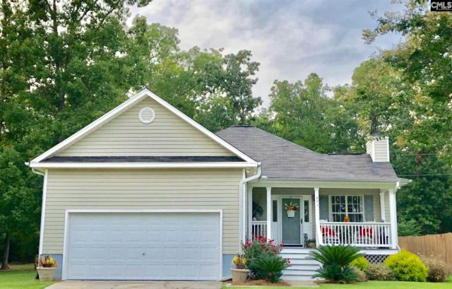 241 Stoney Pointe Drive #10, Chapin, SC 29036 (MLS #454788) :: EXIT Real Estate Consultants