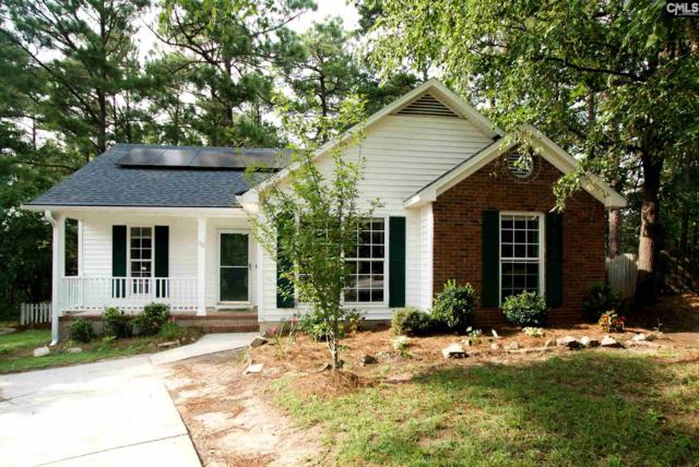 23 Kingsway Road, Irmo, SC 29063 (MLS #454800) :: EXIT Real Estate Consultants