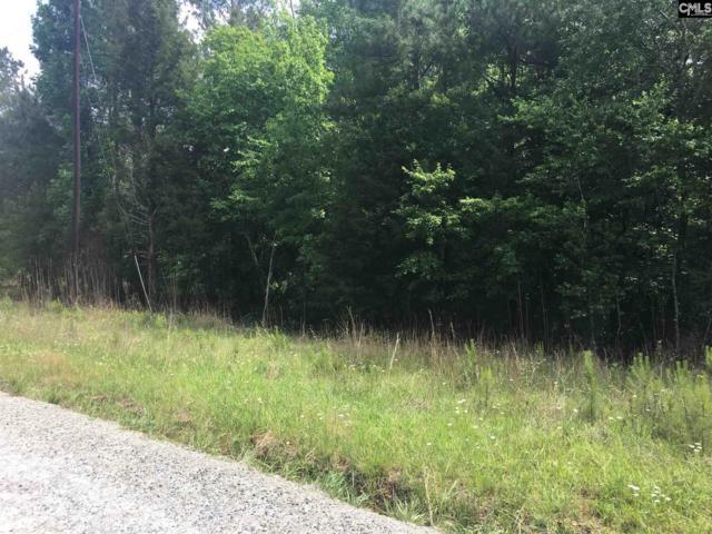 134 Heises Pond Way, Columbia, SC 29229 (MLS #454811) :: Home Advantage Realty, LLC