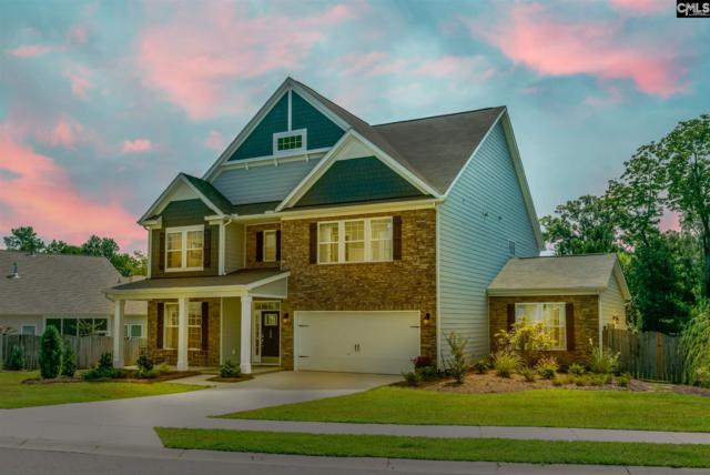 598 Eagles Rest Drive, Chapin, SC 29036 (MLS #454840) :: Home Advantage Realty, LLC