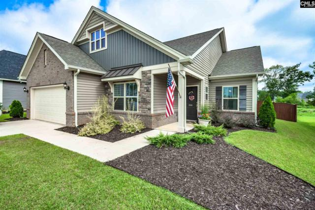 266 Massey Circle, Chapin, SC 29036 (MLS #454857) :: EXIT Real Estate Consultants