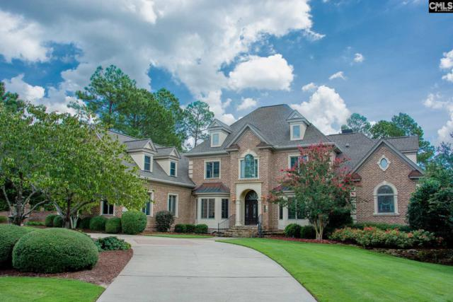 508 Oakbrook Drive, Columbia, SC 29223 (MLS #454899) :: EXIT Real Estate Consultants