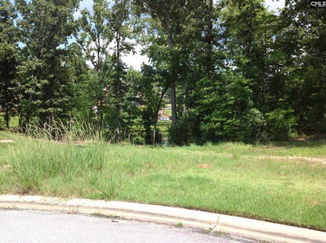 76 Halma Court, Irmo, SC 29063 (MLS #455022) :: EXIT Real Estate Consultants