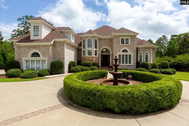 74 Top Sail Court, Columbia, SC 29229 (MLS #455111) :: Home Advantage Realty, LLC