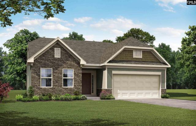 134 Highgate Lane, Chapin, SC 29036 (MLS #455119) :: Home Advantage Realty, LLC