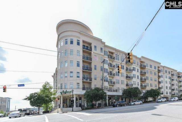 601 Main Street #223, Columbia, SC 29201 (MLS #455264) :: The Olivia Cooley Group at Keller Williams Realty