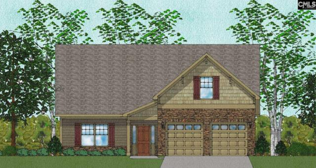 323 Renoir Lane #200, Chapin, SC 29036 (MLS #455289) :: Home Advantage Realty, LLC