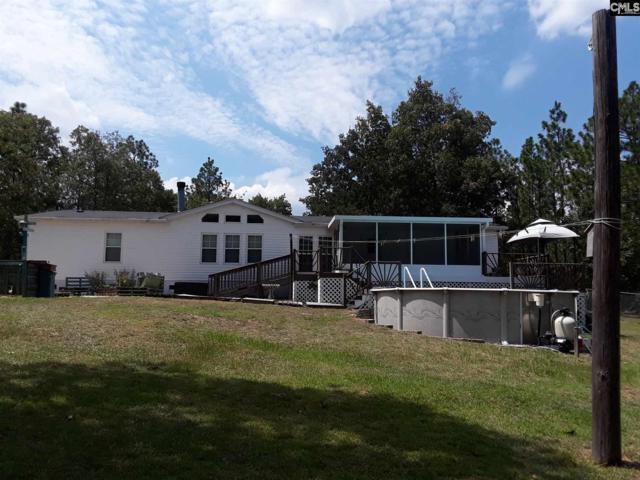 127 Ridgefield Road, Pelion, SC 29123 (MLS #455348) :: Home Advantage Realty, LLC