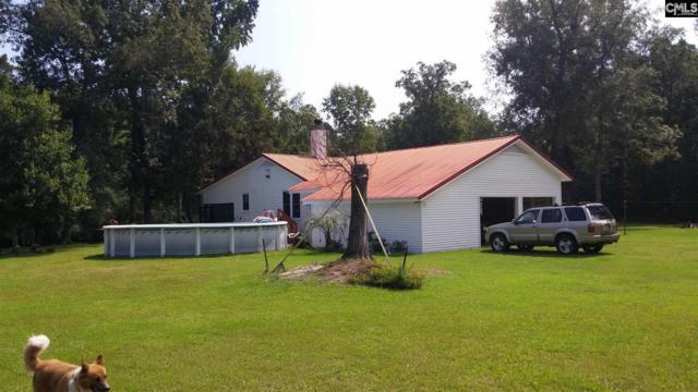 335 Crawfish Road, Branchville, SC 29432 (MLS #455361) :: EXIT Real Estate Consultants