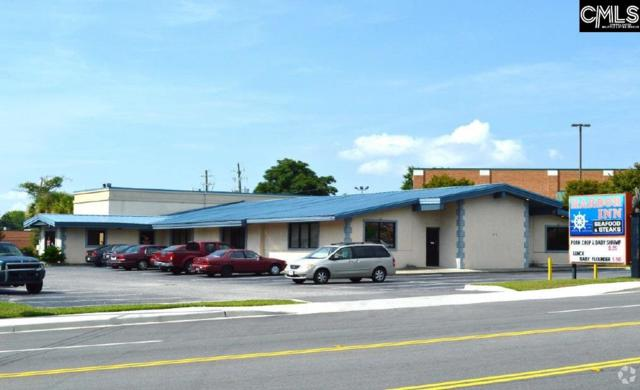 411 W Main Street, Lexington, SC 29072 (MLS #455518) :: Home Advantage Realty, LLC