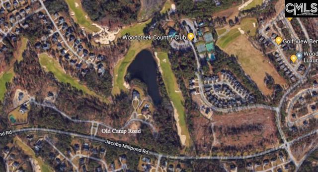 160 Old Camp Road Lot 2, Elgin, SC 29045 (MLS #455557) :: Home Advantage Realty, LLC