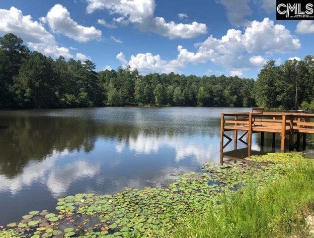 160 Sweetwater Drive, Hopkins, SC 29061 (MLS #455655) :: EXIT Real Estate Consultants