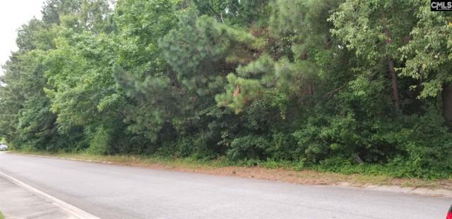 0 Libby Lane, Lexington, SC 29072 (MLS #455884) :: EXIT Real Estate Consultants