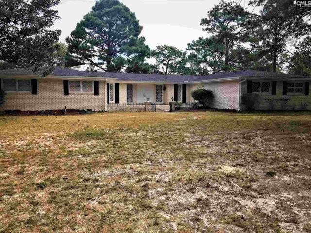 125 W Park Shore Drive, Columbia, SC 29223 (MLS #455899) :: Home Advantage Realty, LLC