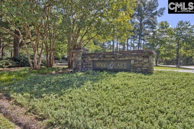 101 Belle Grove Circle, Columbia, SC 29229 (MLS #455952) :: Home Advantage Realty, LLC