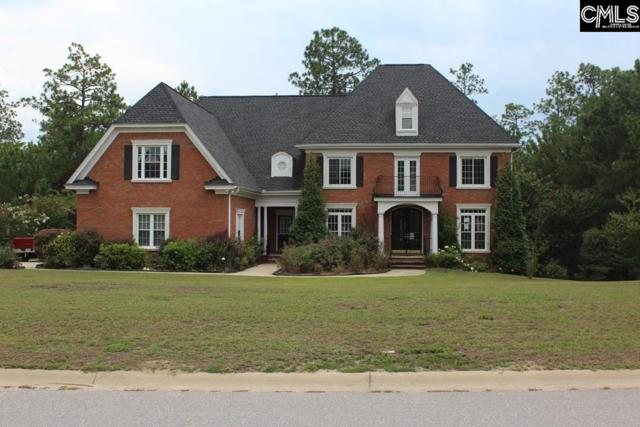 122 Bellelake Court, Columbia, SC 29223 (MLS #456080) :: EXIT Real Estate Consultants
