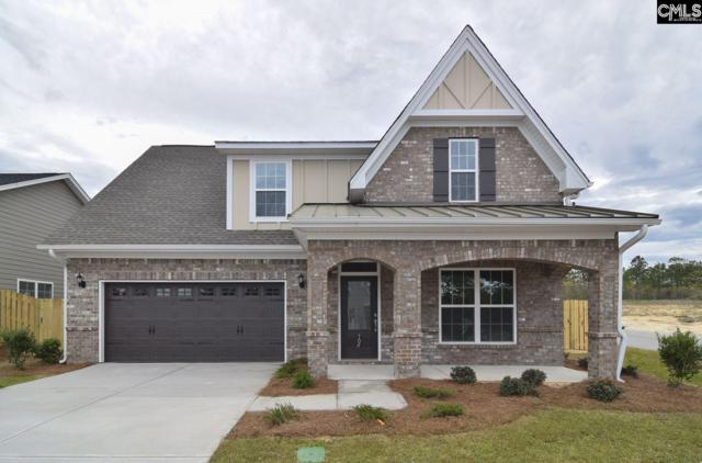 704 Long Iron Lane, Blythewood, SC 29016 (MLS #456105) :: EXIT Real Estate Consultants