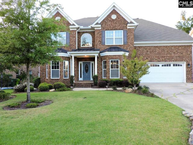 537 Boyd Branch Crossing, Irmo, SC 29063 (MLS #456216) :: EXIT Real Estate Consultants