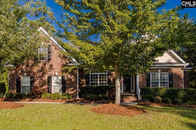 133 Scarlet Oak Way, Lexington, SC 29072 (MLS #456372) :: Home Advantage Realty, LLC