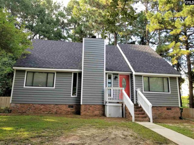 1017 Corley Street, Lexington, SC 29072 (MLS #456458) :: The Olivia Cooley Group at Keller Williams Realty