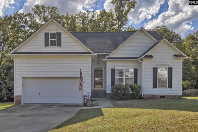 3 Short Pine Court, Irmo, SC 29063 (MLS #456475) :: Home Advantage Realty, LLC