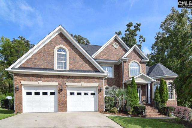 133 Hawks Ridge Lane, Chapin, SC 29036 (MLS #456479) :: EXIT Real Estate Consultants