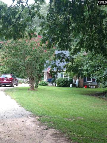 1361 Pet Sites Road, Chapin, SC 29036 (MLS #456642) :: RE/MAX AT THE LAKE