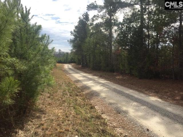 Rocky Branch Road, Chapin, SC 29036 (MLS #456653) :: RE/MAX AT THE LAKE